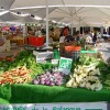 Le marché bio