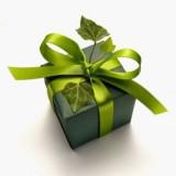 Découvrez 10 éco-gestes pour des fêtes de fin d'année Zéro Empreinte Forêt !