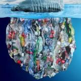 Le plastique ne devrait pas se trouver là !! Regardez ce film …